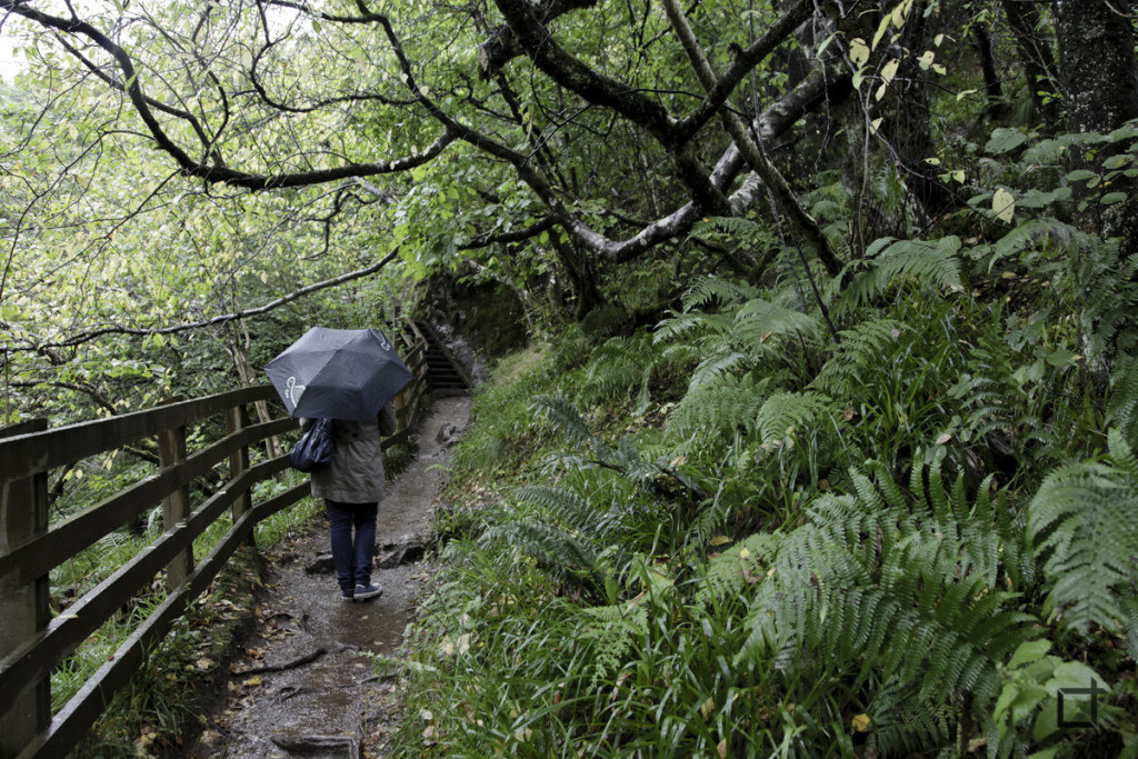 Scozia_Natura