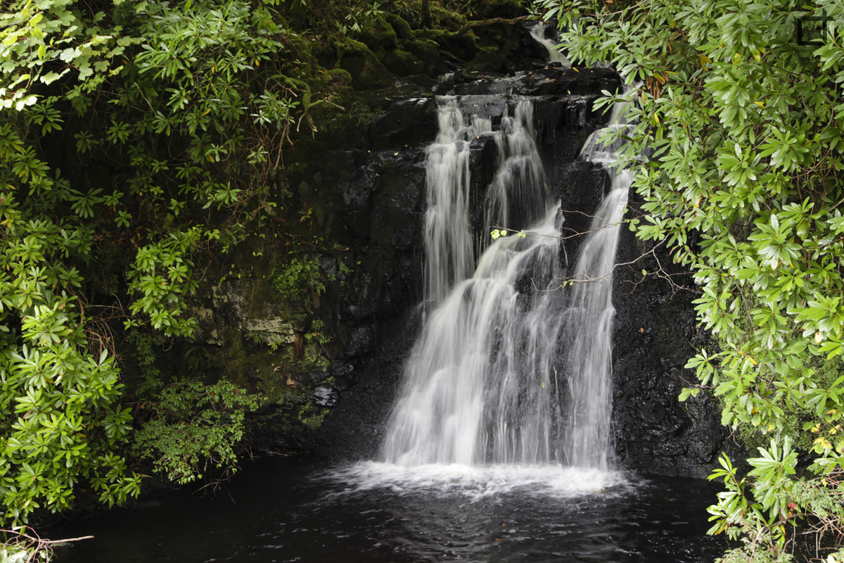 Dunvegan_isola_di_Skye_Parco_Cascata