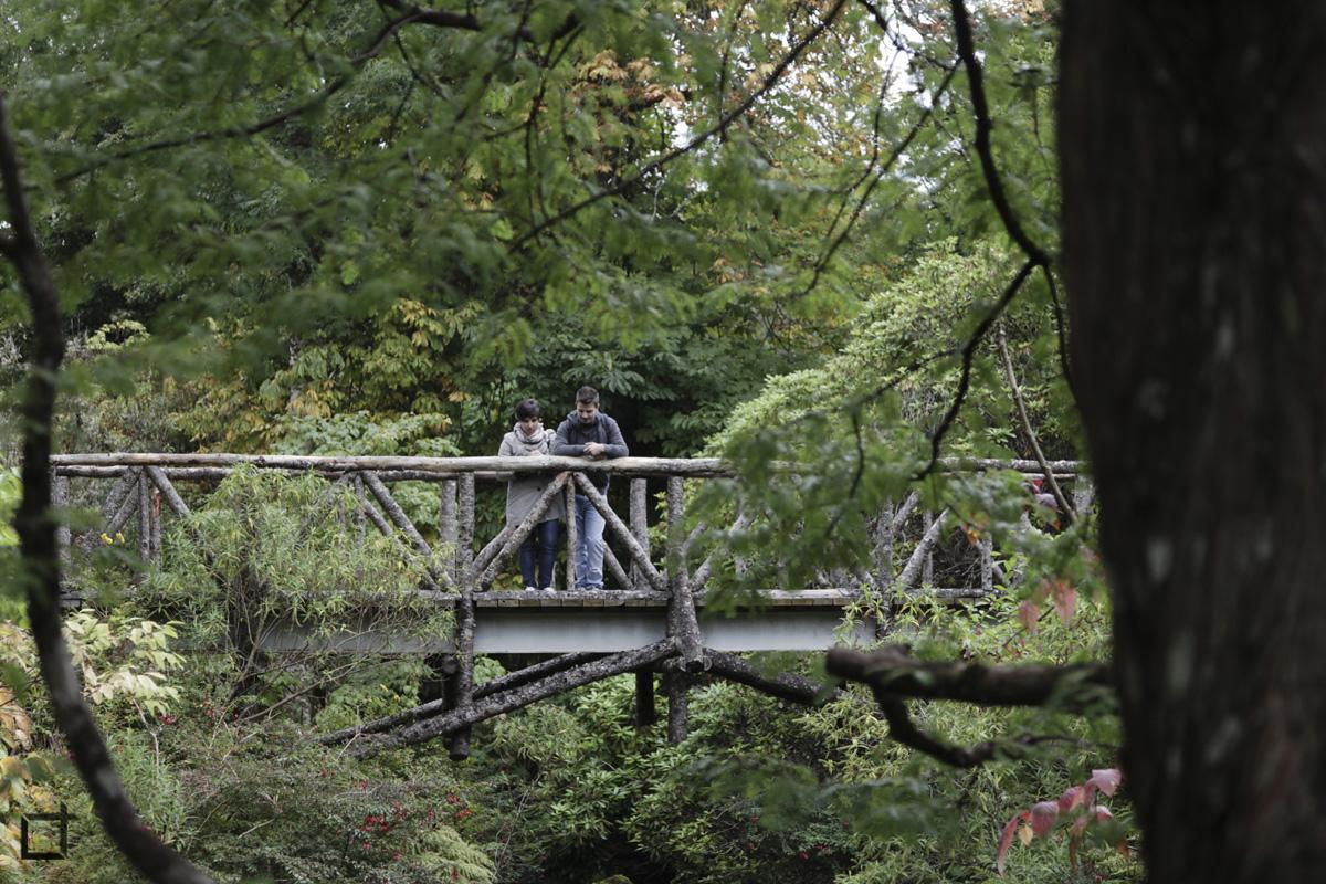 Dunvegan_isola_di_Skye_Parco