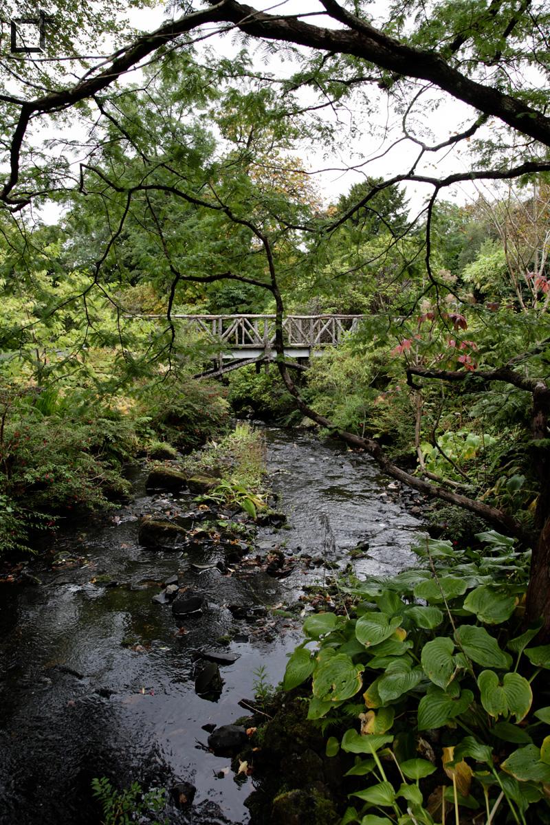 Dunvegan_isola_di_Skye_Parco_Ponte