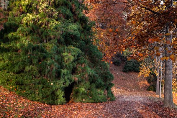 Parco Biella Autunno