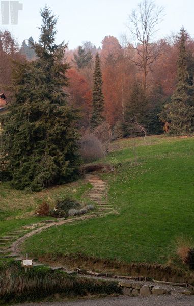Parco Burcina Sentiero