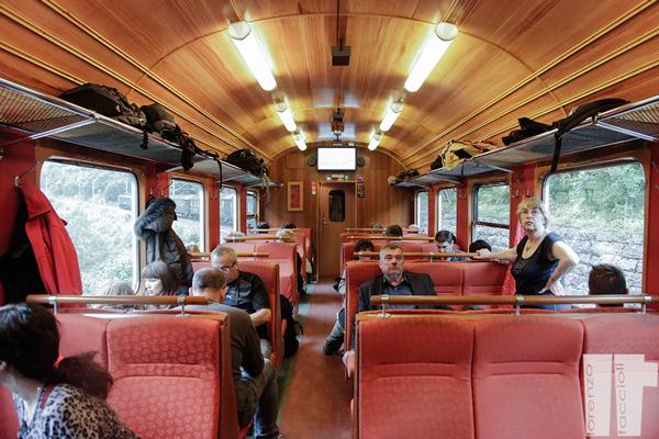 Flam Railway Treno