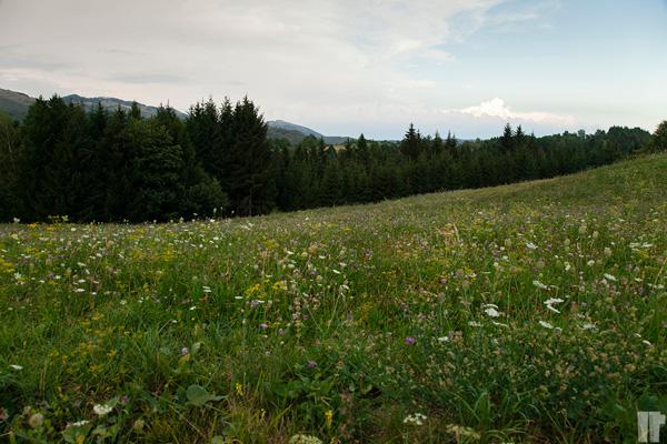 Slovenia_On_the_Road