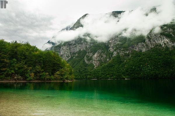 Lago_Bohinj