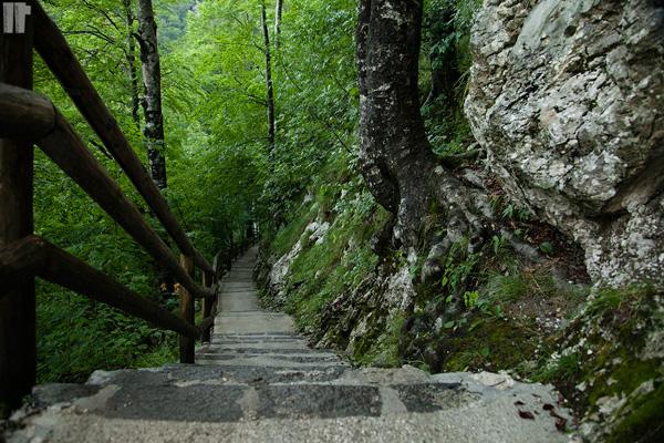Cascata_Savica