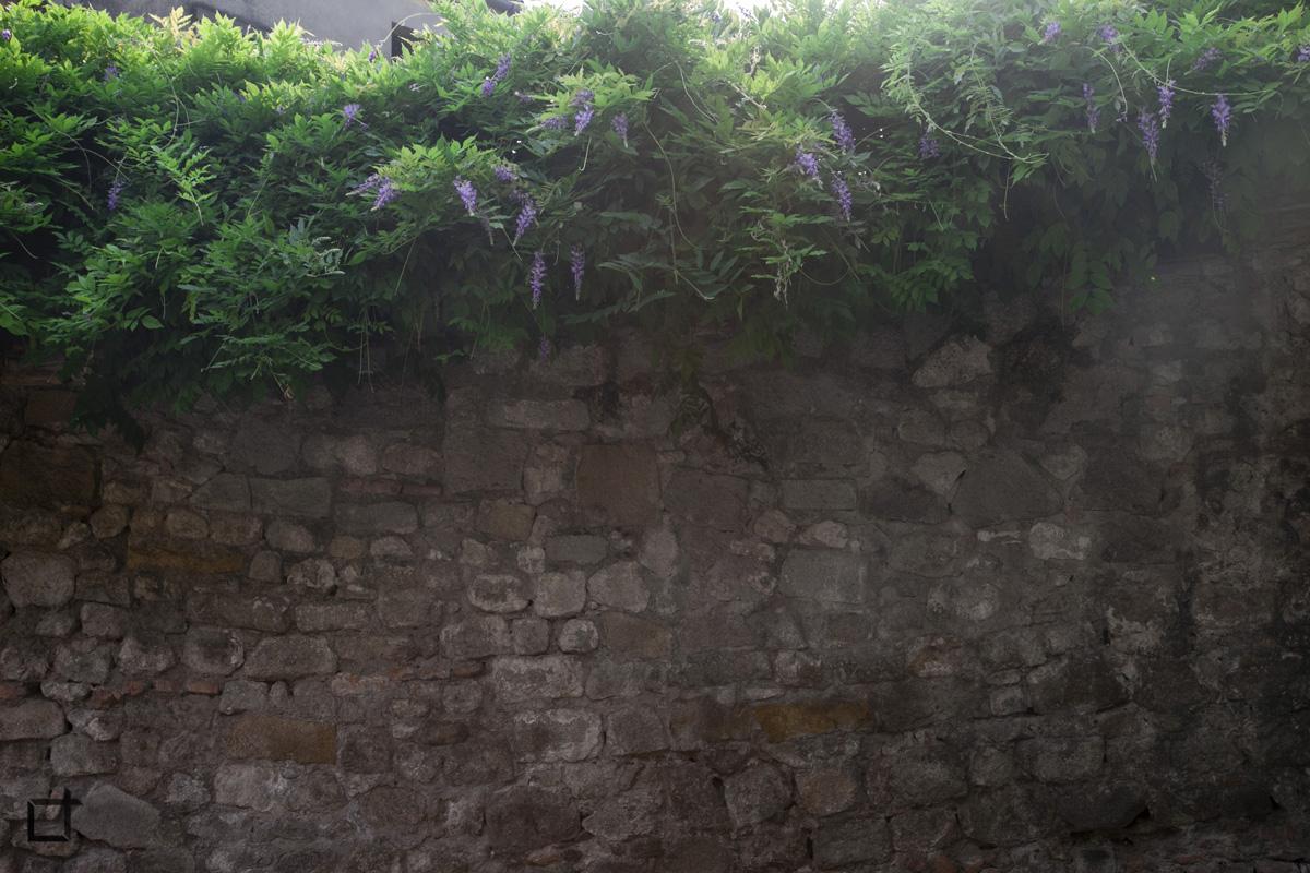 Mura con Verde