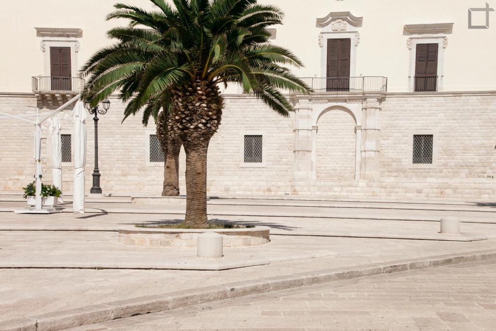 Piazza con Palme