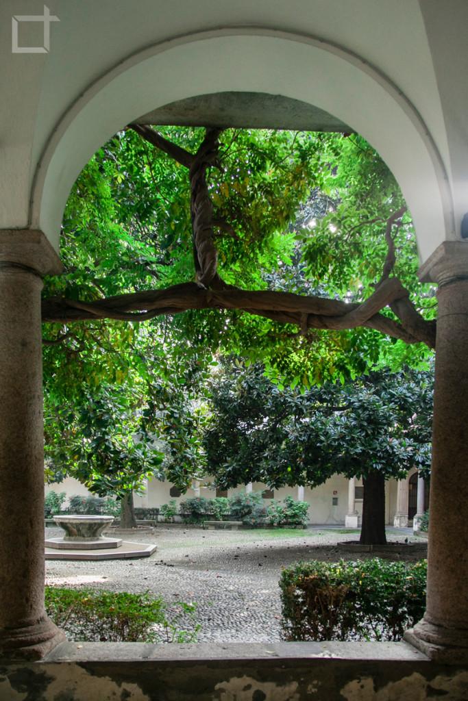 Giardino Università