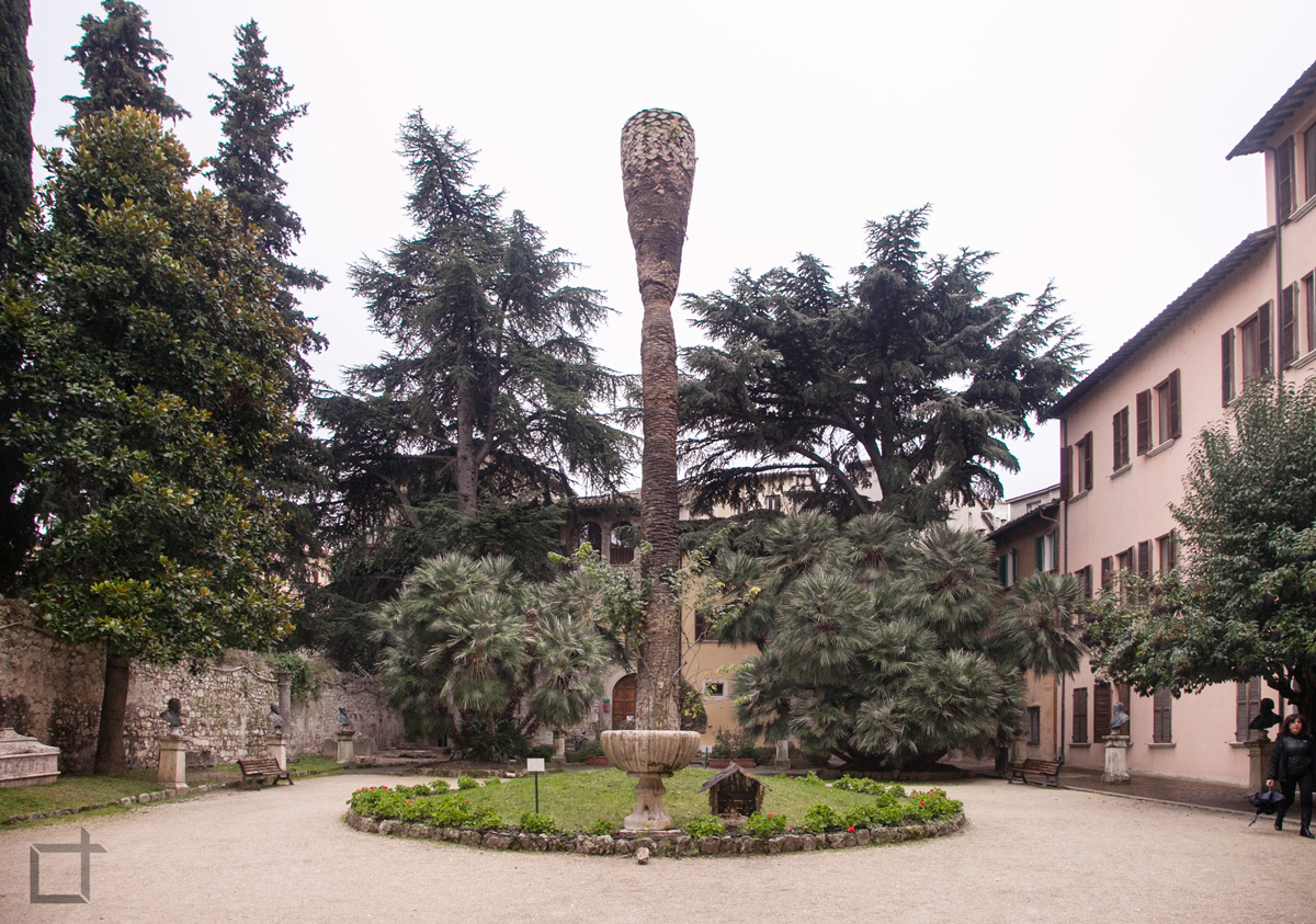 Corte Palazzo dell'Arengo