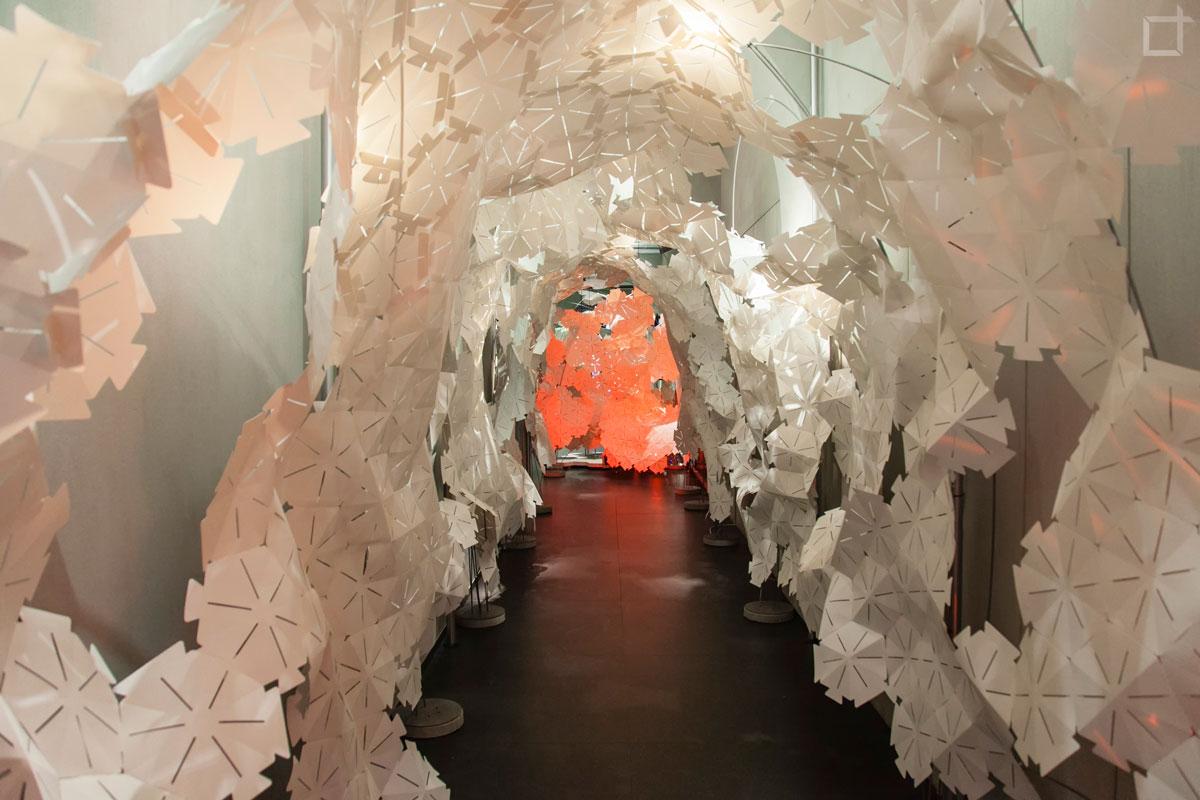 Tunnel di Plastica