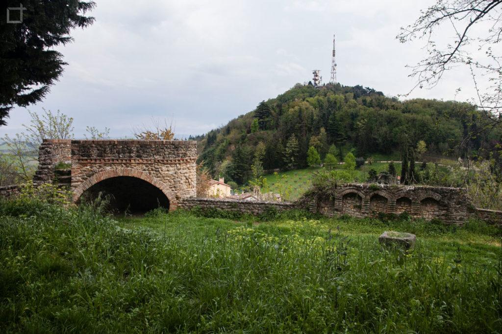 Torre Bertinoro e Montemaggio