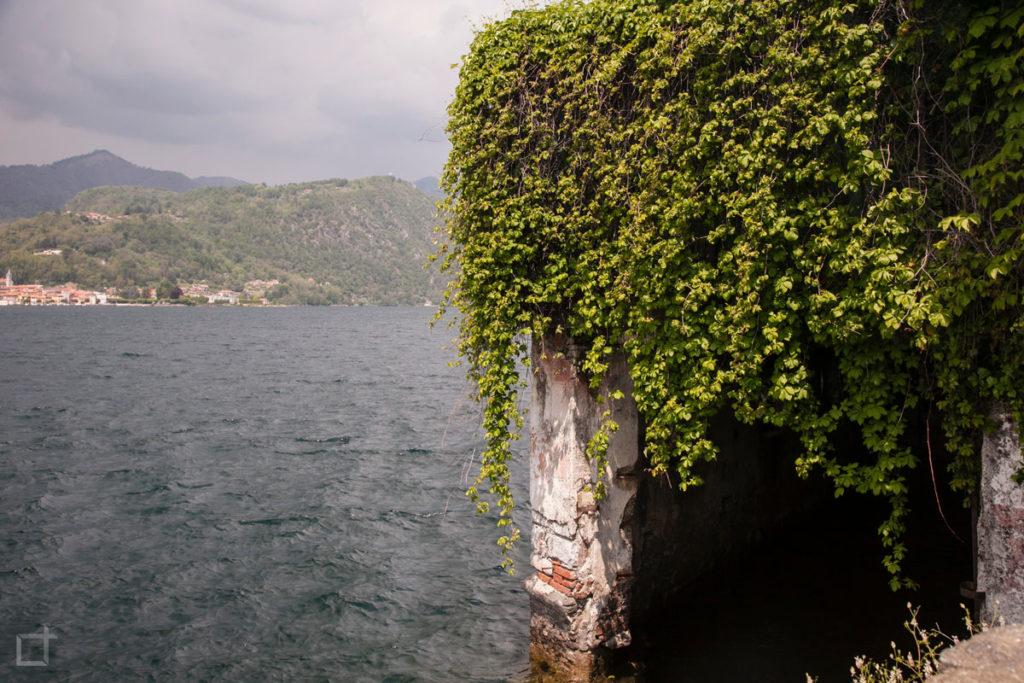 Lago e Vegetazione