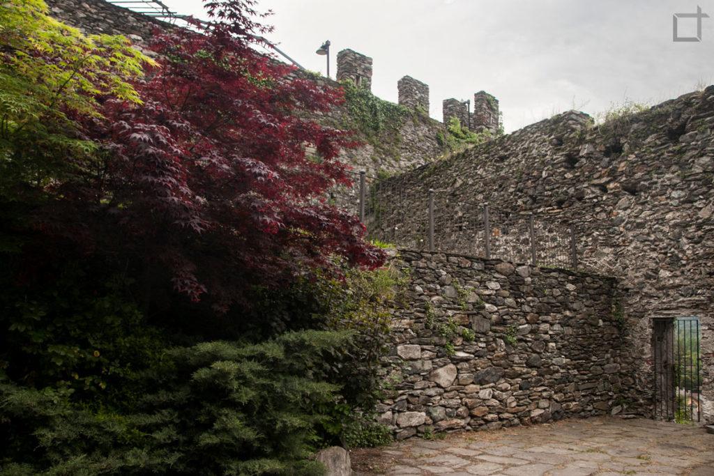 Mura ed Alberi