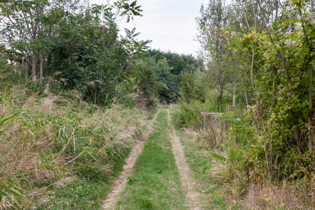 passeggiata area protetta parco dei Meandri