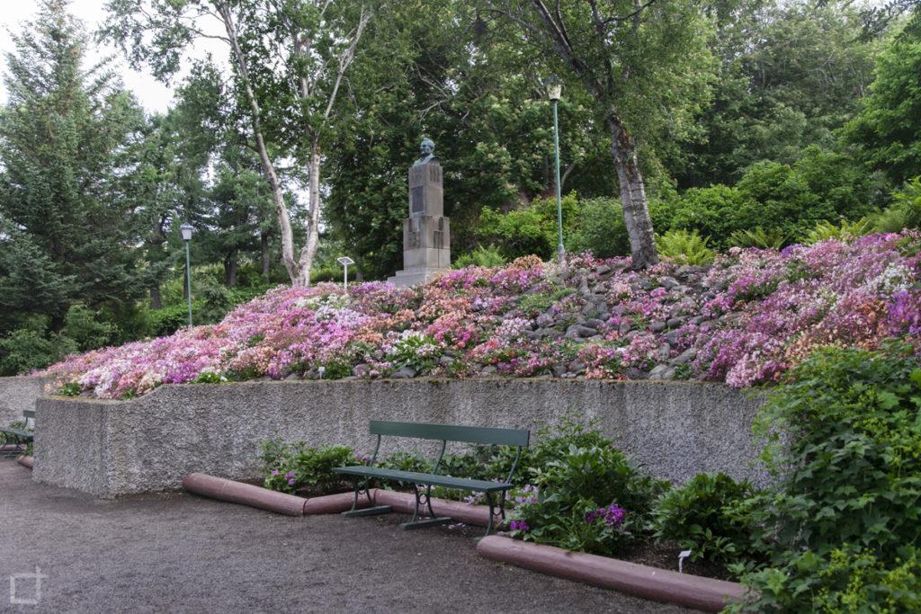botanical-garden-akureyri
