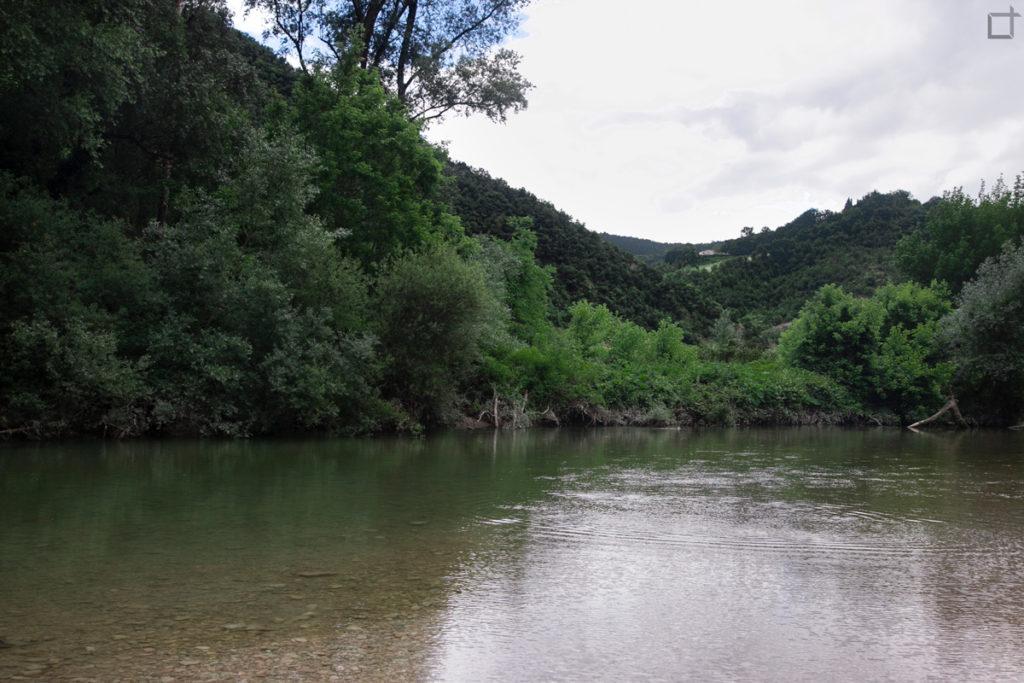 fiume-ed-alberi