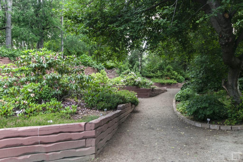 giardino-botanico-piu-grande-di-islanda