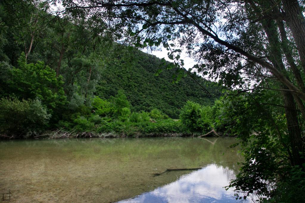 riflesso-fiume-metauro