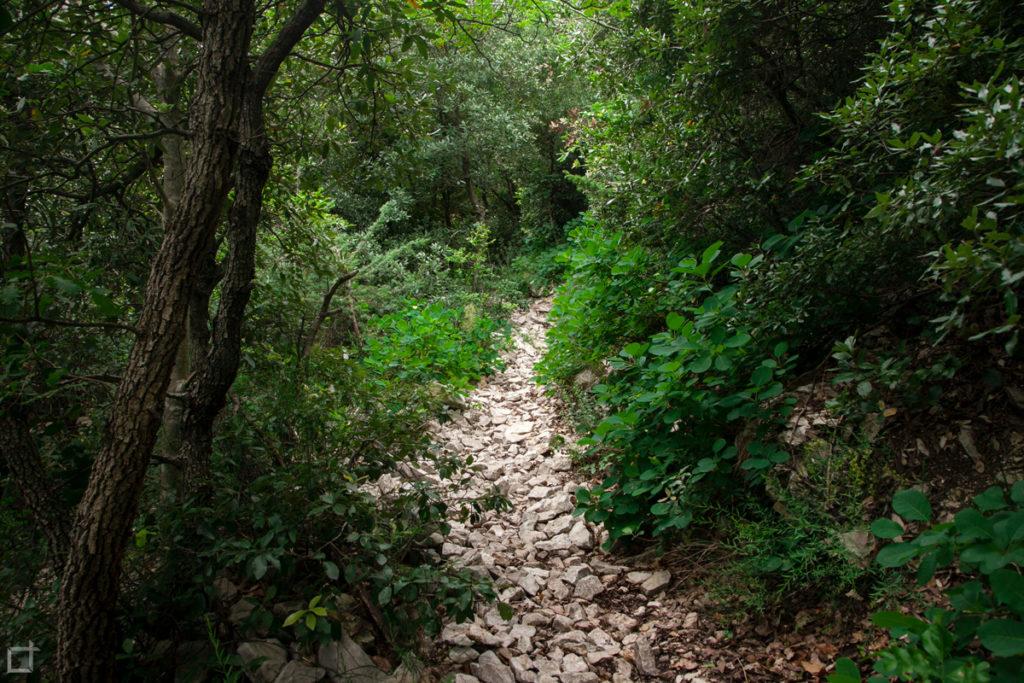 sentiero-monte-pietralata-per-monumento-benito-mussolini