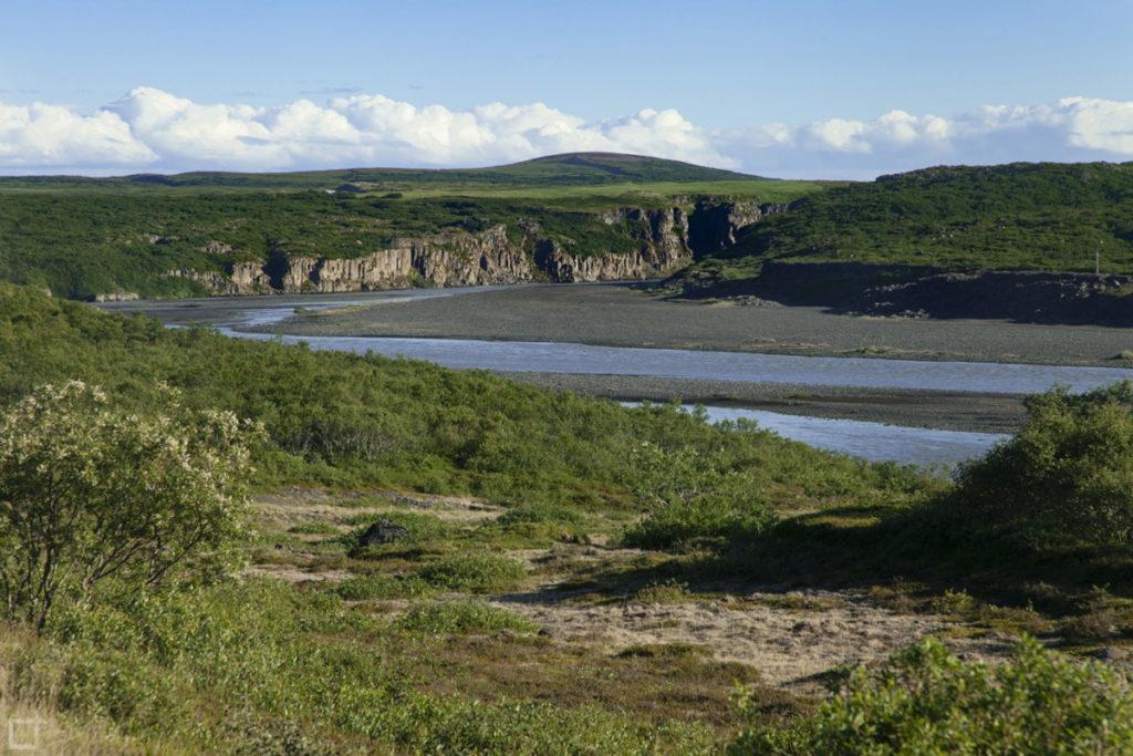 Fiume nel Canyon Jokulsagljufur Islanda