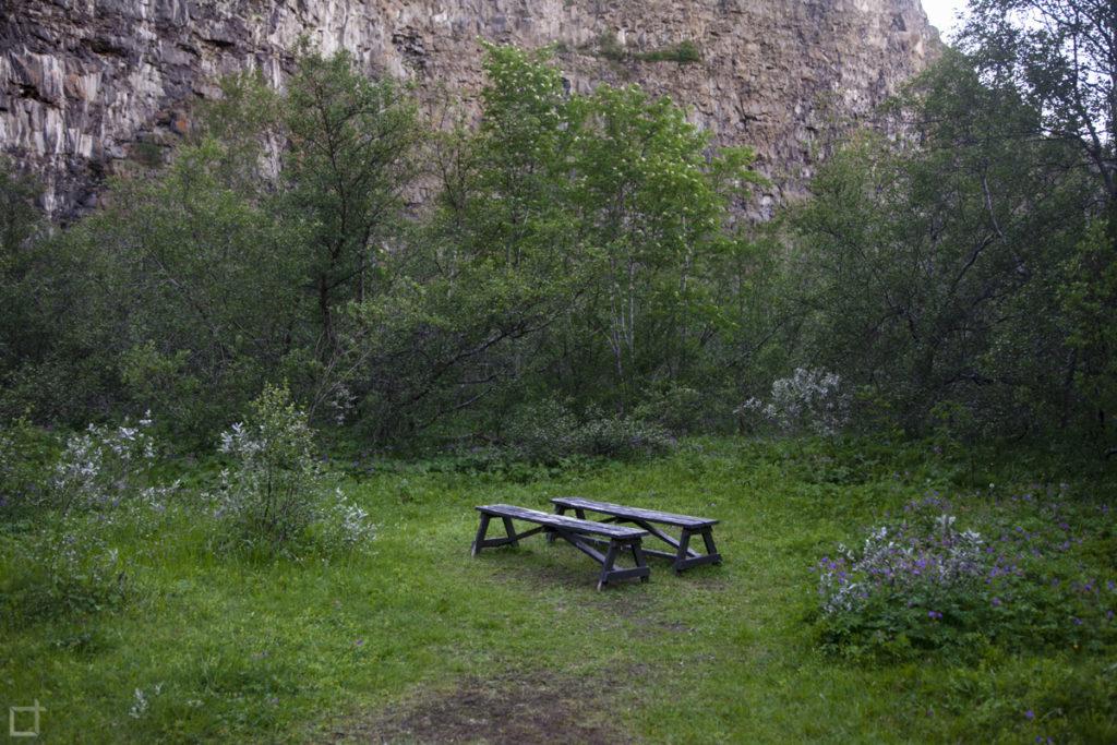 Foresta ad Asbyrgi