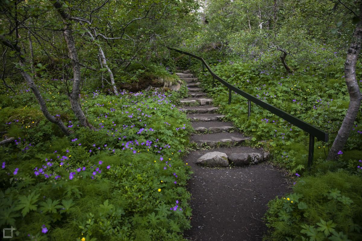 Scalinata nella natura Islanda
