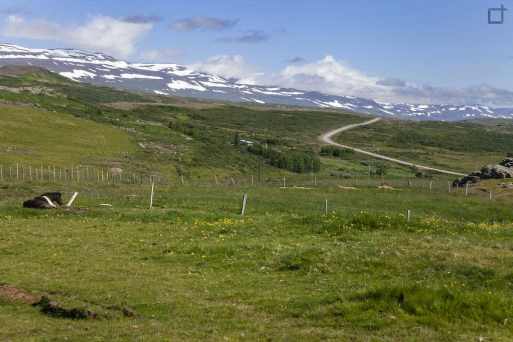 Egilsstadir Islanda Orientale