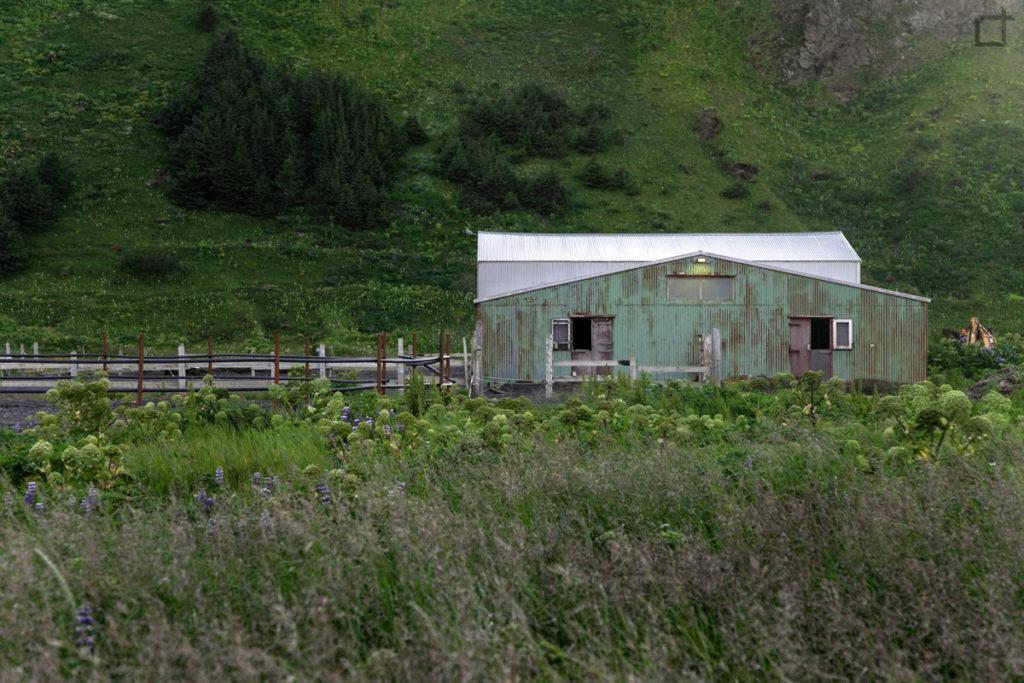 Fattoria Regione Sudurland Islanda