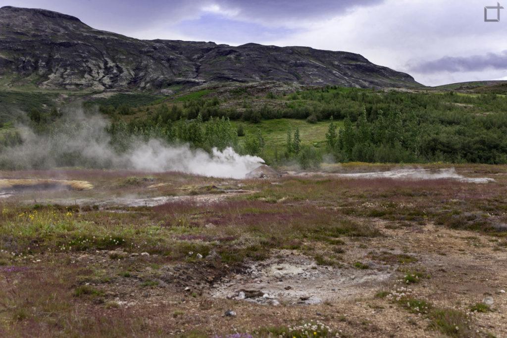 Geysir Valle di Haukadalur Islanda
