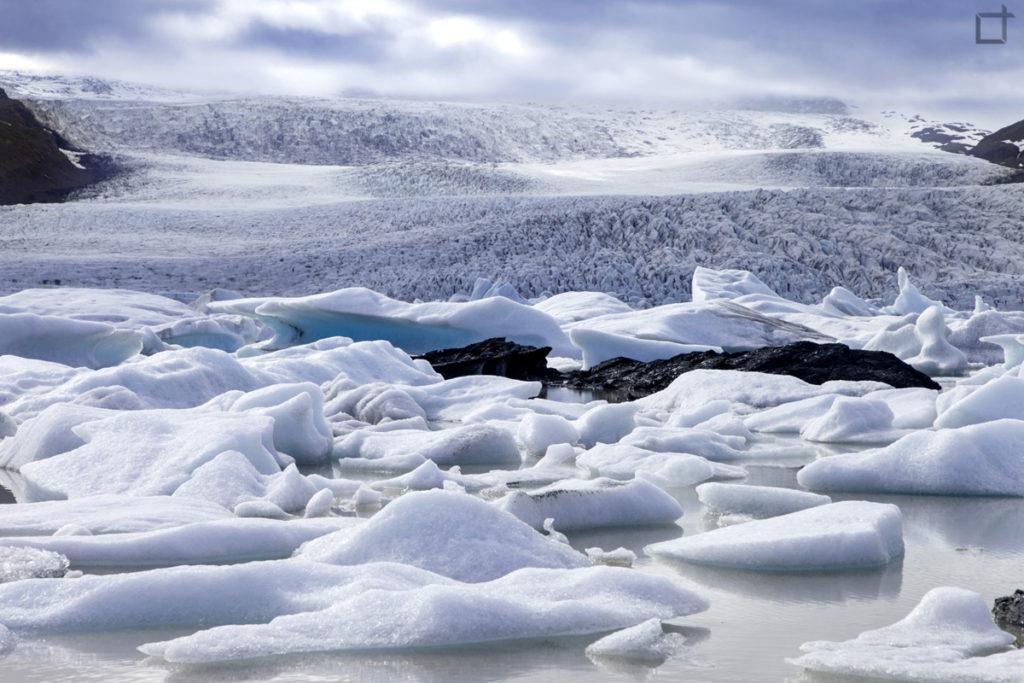 Iceberg che navigano