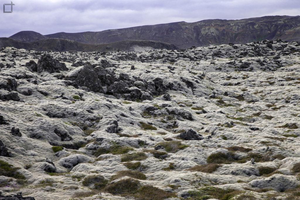 Lava e Licheni a Krysuvik - Seltun - Islanda