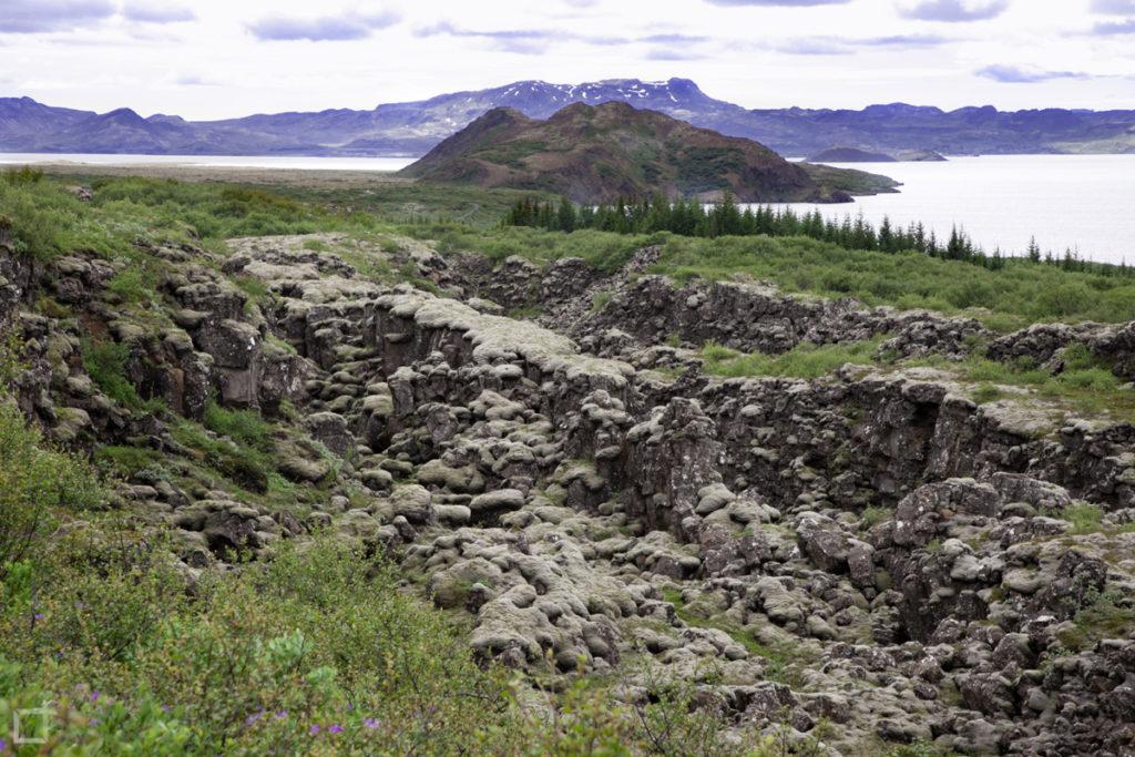 Lava e Muschio Lago Thingvallavatn