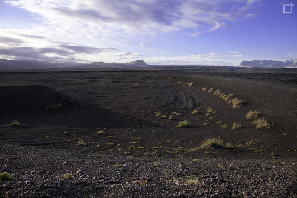 Lava e bassa vegetazione Islanda