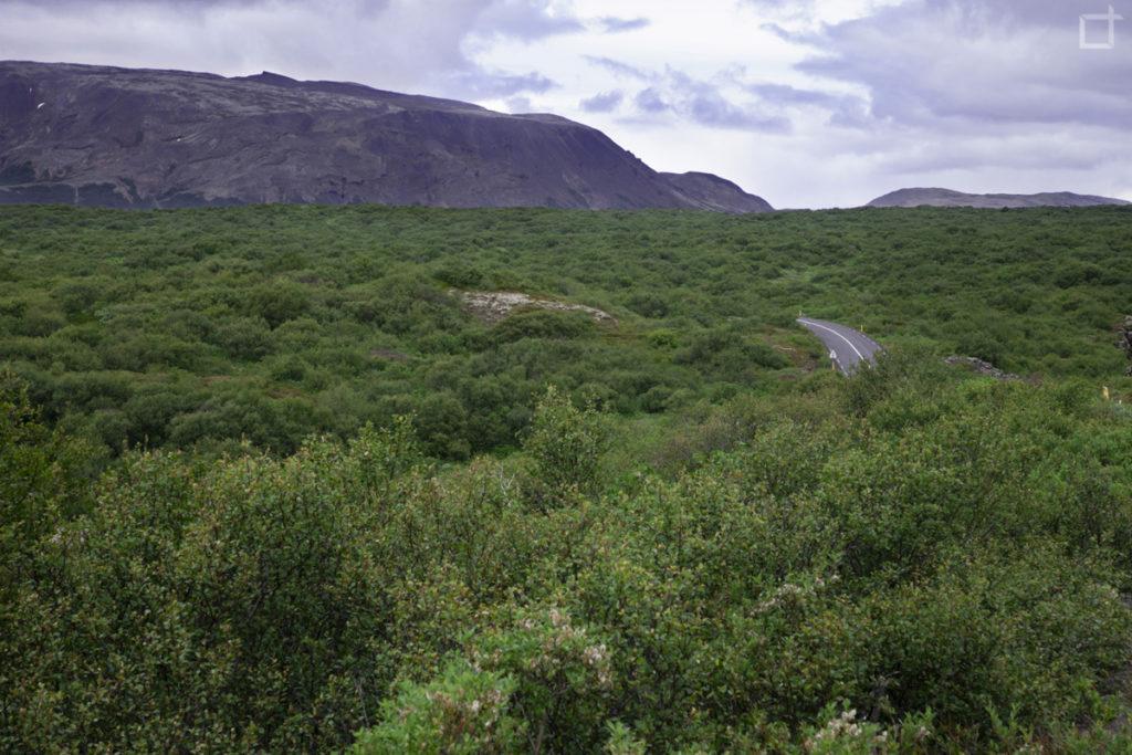 Natura Selvaggia Islanda Circolo d'Oro