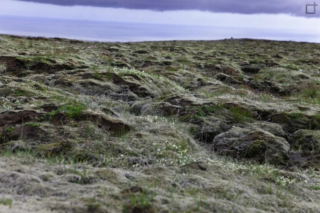 Paesaggio lunare islanda