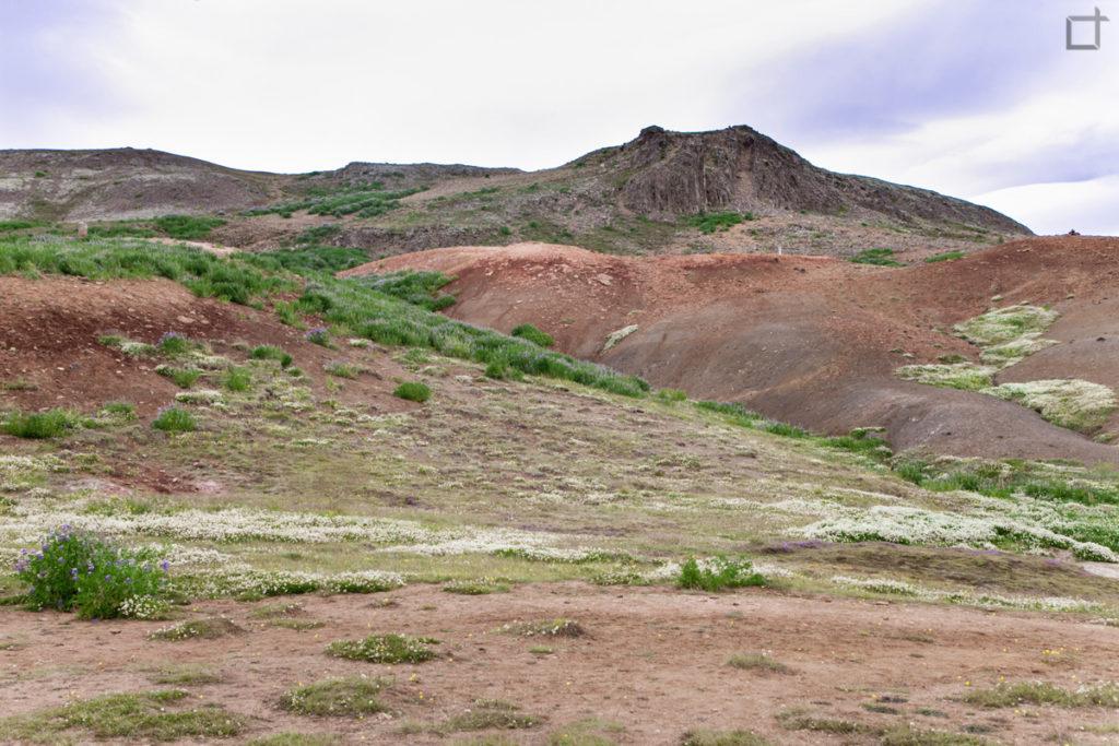 Valle dei Geyser