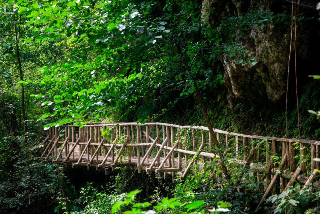 Passerella in Legno in mezzo alla natura