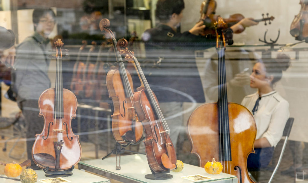 Negozio di violini - Cremona citta del violino