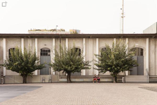 Piazzetta e Alberi Fondazione Prada