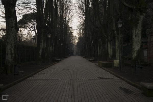 Viale Alberato - Viale delle Rimembranze