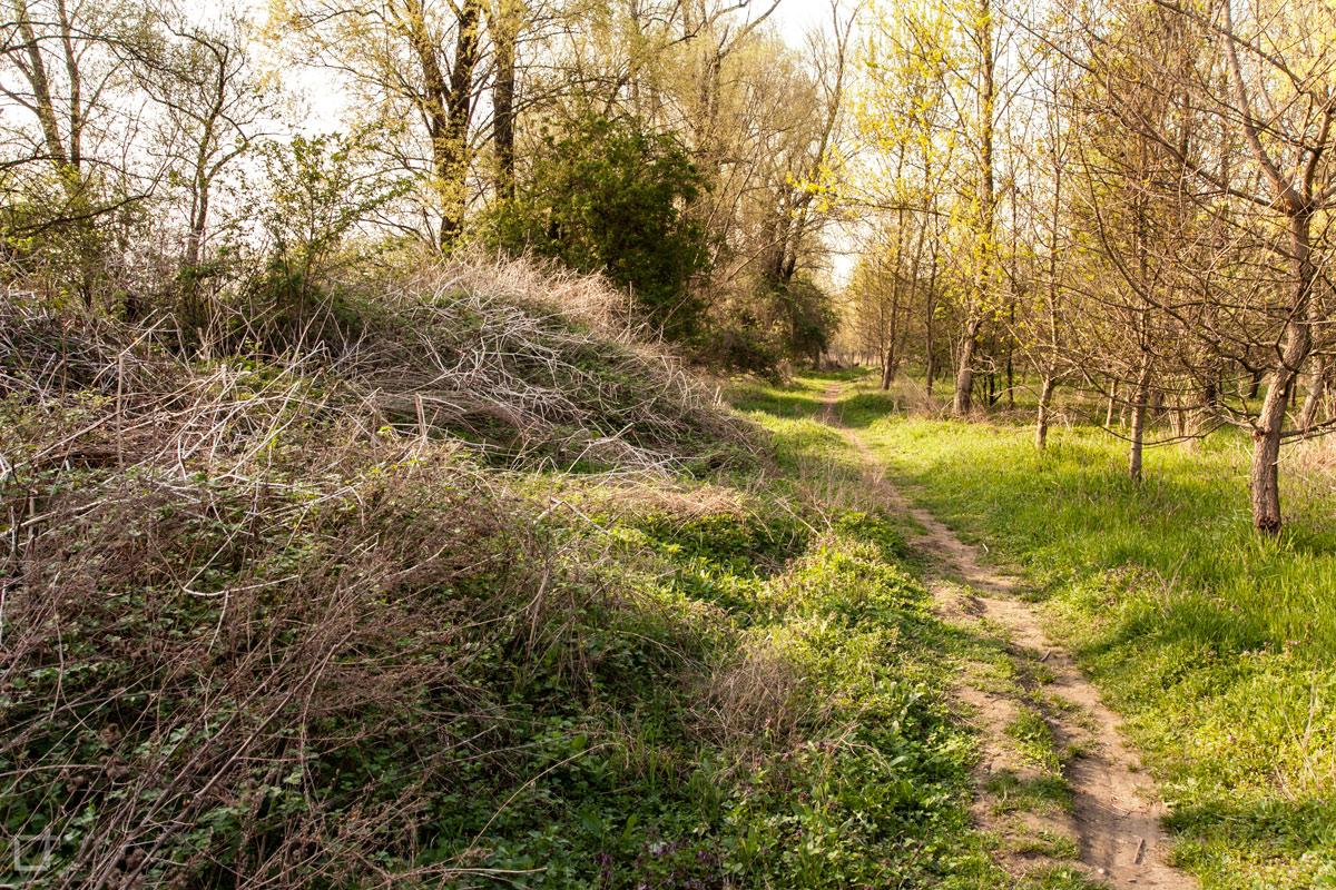 Parco Adda Sud Percorso nella Natura