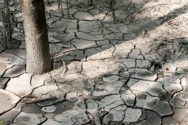Lago di Argilla e bolle di metano