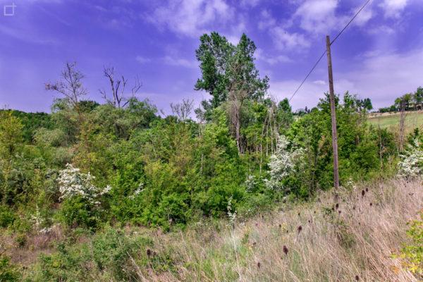 Natura in Area Protetta