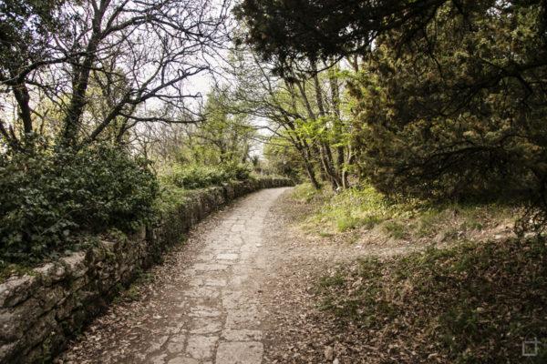 Passeggiata nel parco del castello