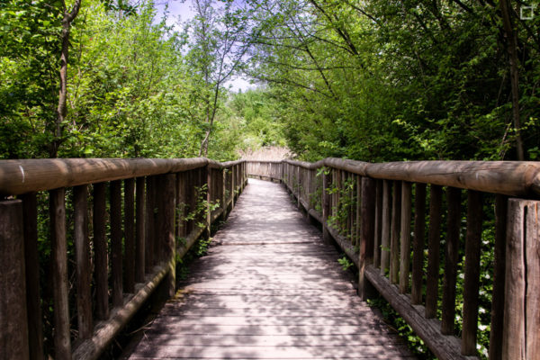 Ponte Pedonale con Passerella in Legno