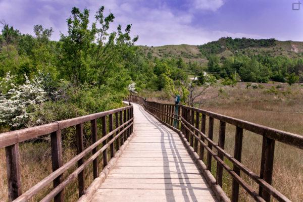 Sentiero Salse di Nirano - Percorso in Legno