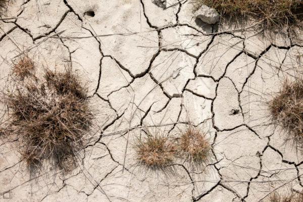 Terreno Fangoso di Argilla