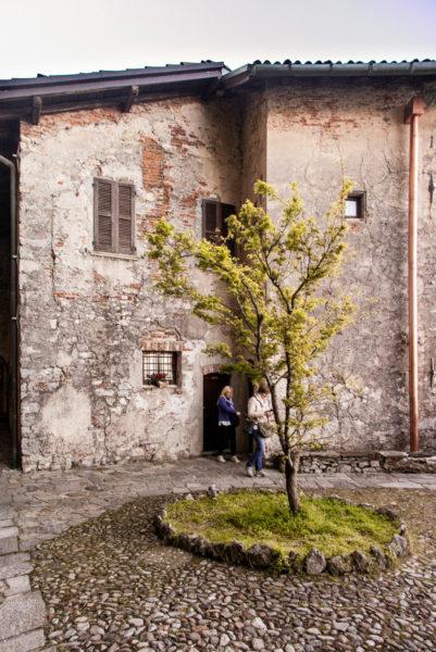 Albero e Edifici Storici