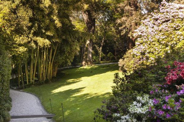 Passeggiata nei giardini all'inglese